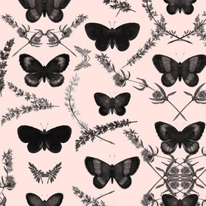 Romantic butterfly _ red-black/pink