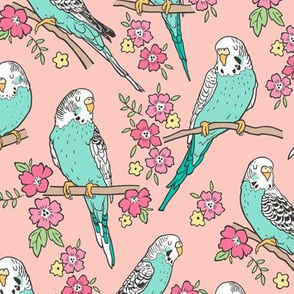 Budgie Birds With Blossom Flowers on Peach