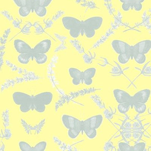 Romantic Butterfly _ gray mint/yellow