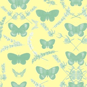 Romantic Butterfly _ Green/Yellow
