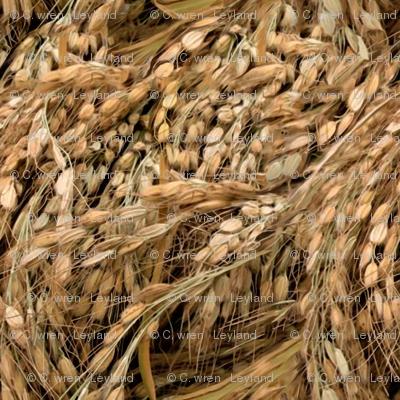 Russian Rice