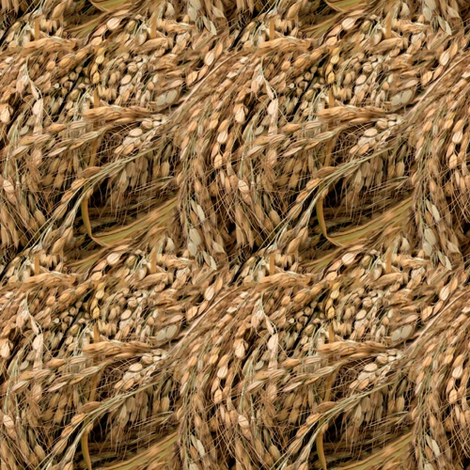 Russian Rice  fabric by wren_leyland on Spoonflower - custom fabric