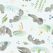 Manateerepeatscatterrevised_shop_thumb