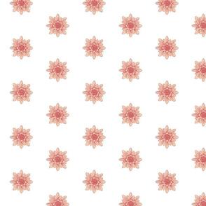 lightpink flower