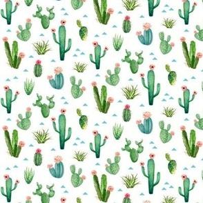 TINY Watercolor Cactus Garden
