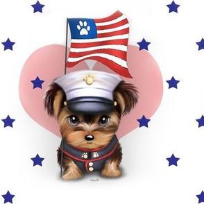 Yorkie Marine stars L