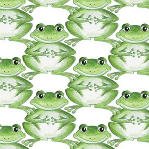 Frogs Small