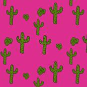 Hot Pink Desert Cactus