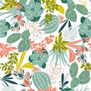 Succulent Garden - White