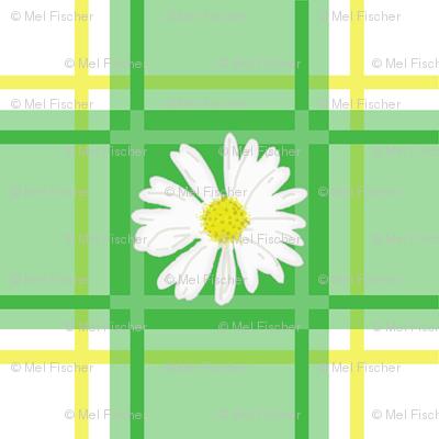 Daisies on Green Plaid