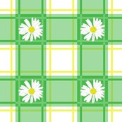 Daisy_plaid_green_3_150ppi_shop_thumb
