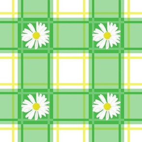 Daisies on Green Plaid
