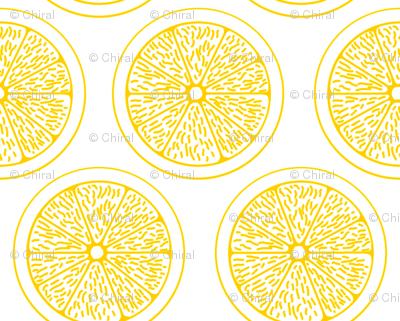 Lemon Slices on White