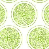 Limes_white_shop_thumb