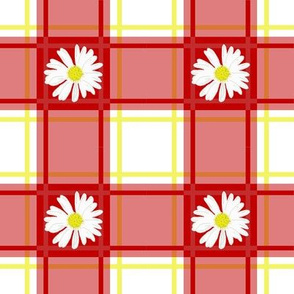 Daisies on Red Plaid