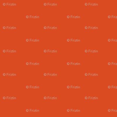 M+M Ruby Solid by Friztin