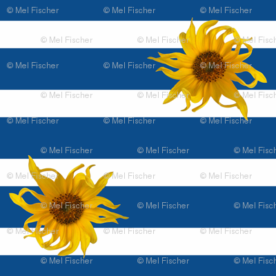 Sunflowers on Blue and White Stripes