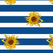 Rrrsunflower_stripes_blue_150_shop_thumb