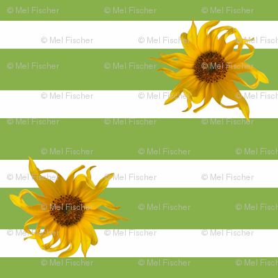 Sunflowers on Green and White Stripes