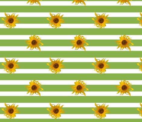 Rrsunflower_stripes_green_150_shop_preview