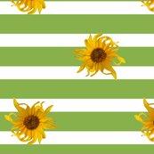 Rrsunflower_stripes_green_150_shop_thumb