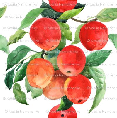 Bright summer apples