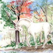 Watercolor Woods with Unicorn