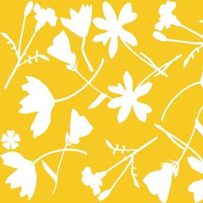 yellow_field_of_flowers