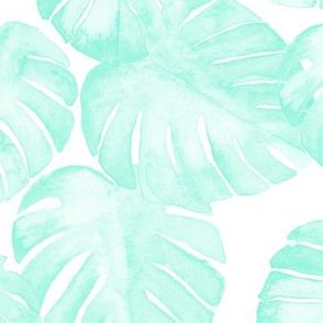 watercolor monstera leaf mint