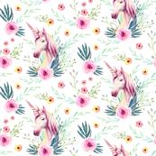 Patterns of Unicorn