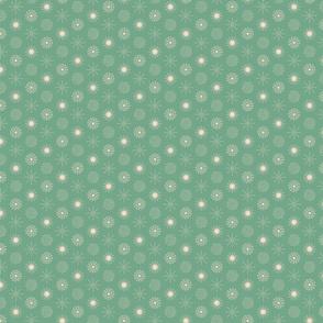 Cacti-4