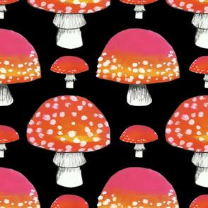 Fungi-pattern