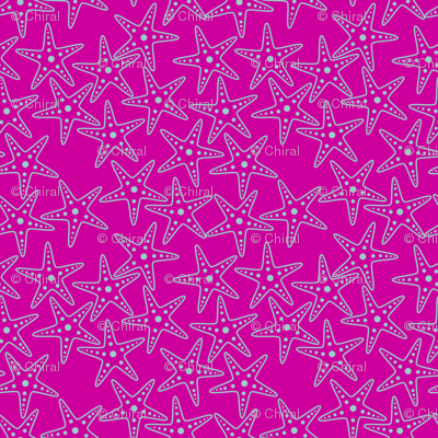 Starfish Background (light teal on pink)