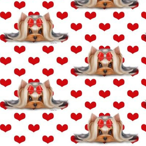 Yorkie Beauty red hearts white M