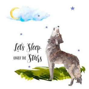 "8"" Let's Sleep Under the Stars Mix & Match"