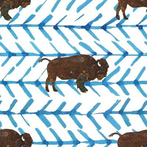 """8"""" Buffalo Fossils with Blue Arrows"""
