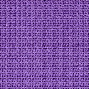 Black Snail on Purple Thistle