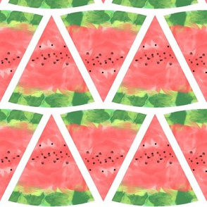 Watermelon Watercolor Pink and Green