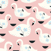 Swans in pink
