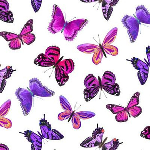 Warm Butterflies in Reds and Purples