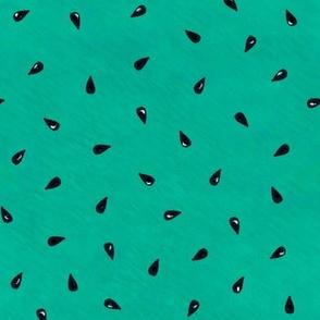 Summer Watermelon Seeds - Green
