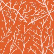 branchy - orange-blush/branch/straw
