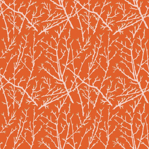 branchy - orange-blush/branch/straw