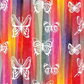 sausalito butterflies