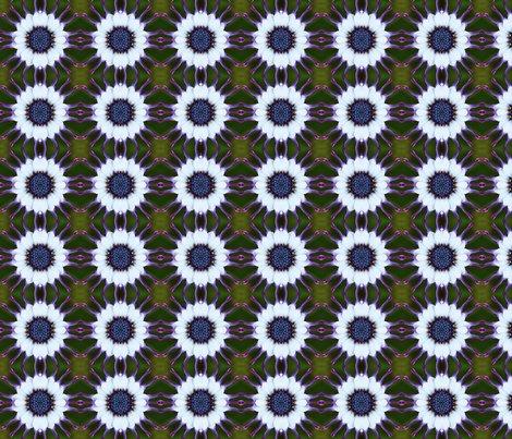 Rrrflower26x4_shop_preview