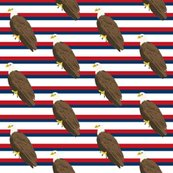 Rcw_america_eagle_3_shop_thumb
