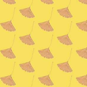 Beige Ginkgo Leaves on Yellow