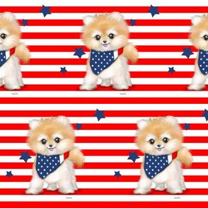 Patriotic Pomeranian Stripes M