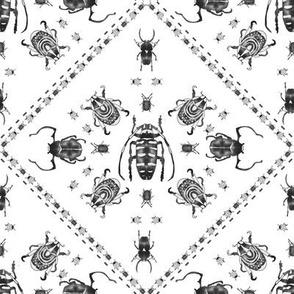 beetle mania black and white