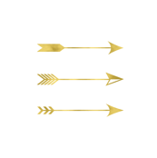 Gold Foil Arrows